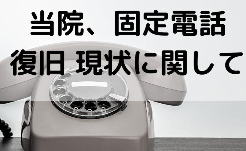 固定電話について